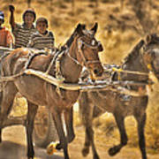 This Is Namibia No. 23 - Going To Town The Old Fashioned Way Poster by Paul W Sharpe Aka Wizard of Wonders