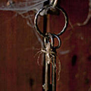 Three Keys Poster by Georgia Fowler