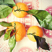 Three Tangerines Poster by Lupen  Grainne