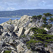 Trees Amidst The Cliffs In California's Point Lobos State Natural Reserve Poster by Bruce Gourley