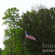 Trees And Flag Poster by Joseph Baril