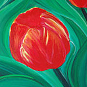 Tulip Diva By Jrr Poster by First Star Art