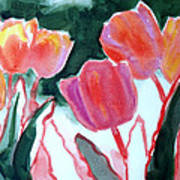 Tulips For The Love Of Patches Poster by Kathy Braud