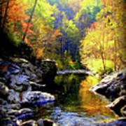 Upstream Poster by Karen Wiles