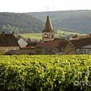 Village Of Monthelie. Burgundy. France Poster by Bernard Jaubert