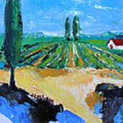 Vineyard 3 Poster by Becky Kim