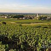 Vineyard And Village Of Pommard. Cote D'or. Route Des Grands Crus. Burgundy.france. Europe Poster by Bernard Jaubert