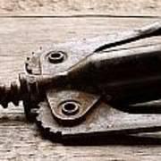 Vintage Corkscrew Poster by Jon Neidert