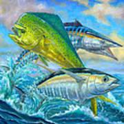 Wahoo Mahi Mahi And Tuna Poster by Terry  Fox