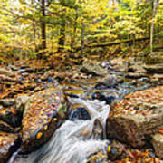 Waterfall In The Fall Nh Poster by James Steele