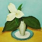 White Trillium Poster by Anastasiya Malakhova