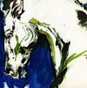 Wild Horse Poster by Angel  Tarantella