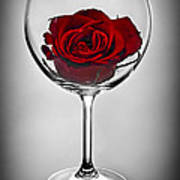 Wine Glass With Rose Poster by Elena Elisseeva