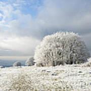 Winter Poster by Anne Gilbert