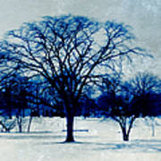Winter Blues Poster by Shawna Rowe