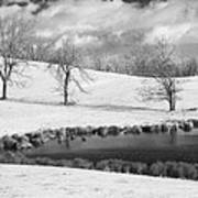 Winter In Kentucky Poster by Wendell Thompson