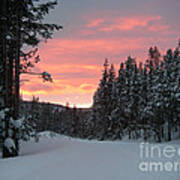 Winter Sunset Poster by Jeanette French