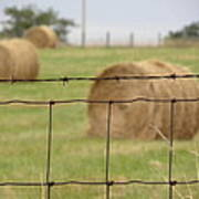 Wire And Hay Poster by Jewels Blake Hamrick