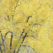Yellow Trees Poster by Ann Powell