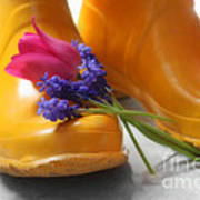 Spring Boots Poster by Cathy  Beharriell