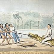 1826 Naturalist Charles Waterton & Caiman Poster by Paul D Stewart