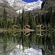 Cabins, Sargents Point, Lake Ohara Poster by John Sylvester