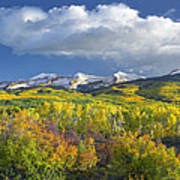 East Beckwith Mountain Flanked By Fall Poster by Tim Fitzharris