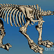 Megatherium Extinct Ground Sloth Poster by Science Source