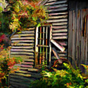 Shed Poster by Suni Roveto