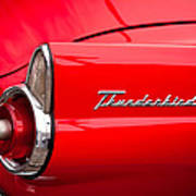 1955 Ford Thunderbird Poster by David Patterson