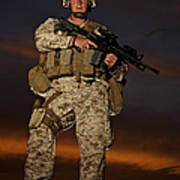 Portrait Of A U.s. Marine In Uniform Poster by Terry Moore