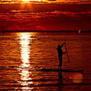Sunset Silhouette Poster by Barbara  White