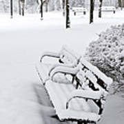 Winter Park Poster by Elena Elisseeva