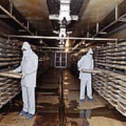 Microbe Fermentation Unit Poster by Volker Steger