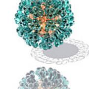 Virus, Computer Artwork Poster by Laguna Design
