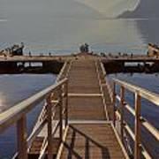 Lago Di Lugano Poster by Joana Kruse