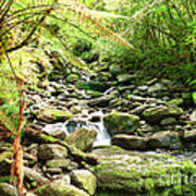 Stream Poster by MotHaiBaPhoto Prints