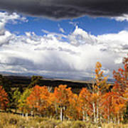 Rocky Mountain Fall Poster by Mark Smith