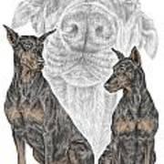 A Doberman Knows - Dobe Pinscher Dog Art Print Poster by Kelli Swan