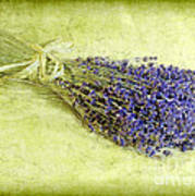 A Spray Of Lavender Poster by Judi Bagwell