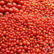 A Variety Of Fresh Tomatoes - 5d17833 Poster by Wingsdomain Art and Photography