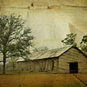 Abandoned Tobacco Barn Poster by Carla Parris