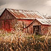 America's Small Farm Poster by Randall Branham