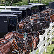 Amish Parking Lot Poster by Tom Mc Nemar