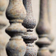 Ancient Spindles Poster by Terry Ellis