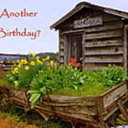 Another Birthday Antiques Poster by Cindy Wright