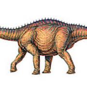 Apatosaurus Dinosaur Poster by Joe Tucciarone