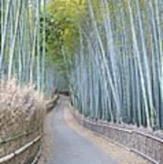 Asia Japan Kyoto Arashiyama Sagano Poster by Rob Tilley