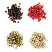 Assorted Peppercorns Poster by Elena Elisseeva