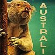 Australia Koala Poster by Flo Karp
